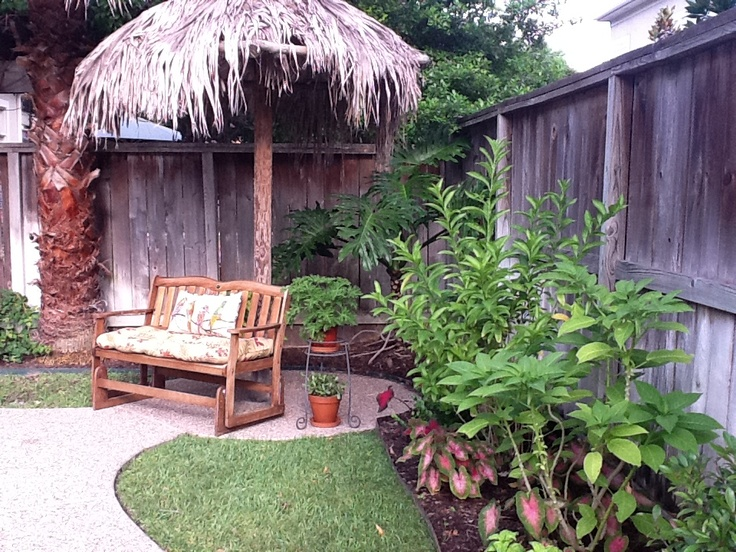tropical backyard photo - 2