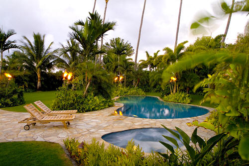 tropical backyard landscaping ideas photo - 2